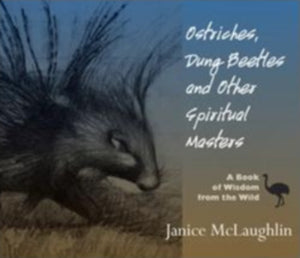 Ostriches, Dung Beetles, and Other Spiritual Masters