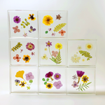 Load image into Gallery viewer, square floral coaster in tickseed