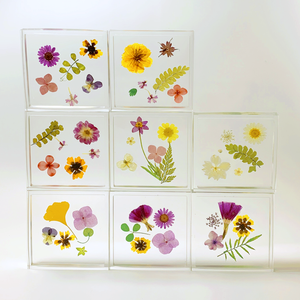 square floral coaster in tickseed