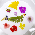 Load image into Gallery viewer, gardener's plate in zinnia