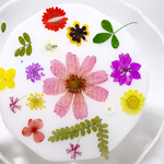 Load image into Gallery viewer, gardener's plate in full bloom