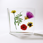 Load image into Gallery viewer, square floral coaster in marigold