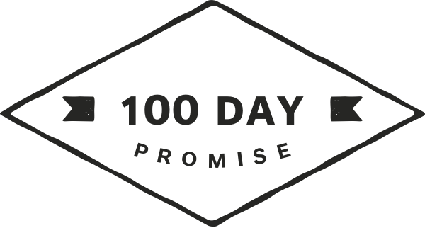 100 Day Promise