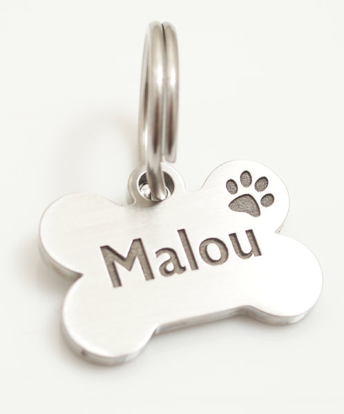 Why Your Pet Needs an ID Tag