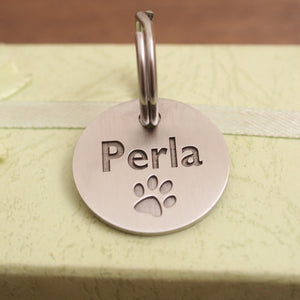 Dog id tag Apollo-08
