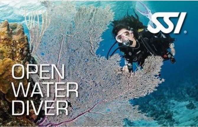 SSI Mid Week Open Water Course