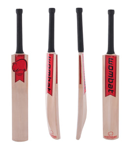 Warrior Junior Bat