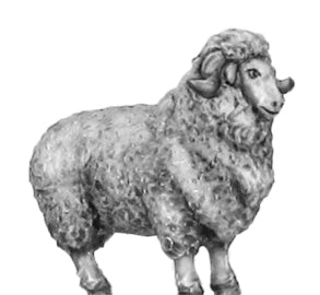 (100ANM17) Merino Ram (only available in set 100ANM20)