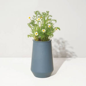 Load image into Gallery viewer, Tapered Tumbler - Chamomile