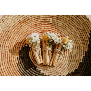 Load image into Gallery viewer, Ecuadorian Palo Santo + Quartz Crystal Bundle
