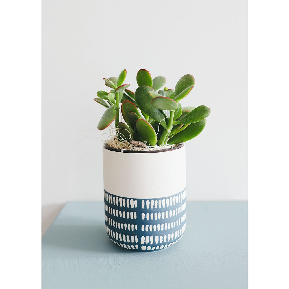 Blue and White Geometric Flower Pot