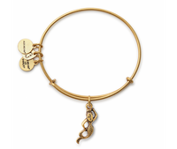 Alex & Ani Charm Bracelet - Mermaid