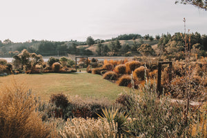 Garden House is a boutique farm shop and market garden situated on Kina Peninsula, Nelson Tasman. A boutique wedding, retreat or corporate venue on the Moutere inlet and Great Taste Trail.