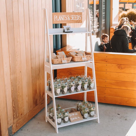 Seed_Seedling_Retail_Stand_Mapua