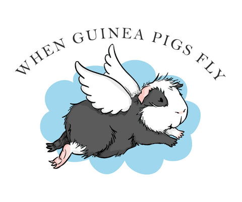 When Guinea Pigs Fly Gift Card