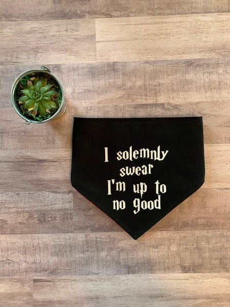 I Solemnly Swear