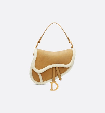 dior saddle bag 2020