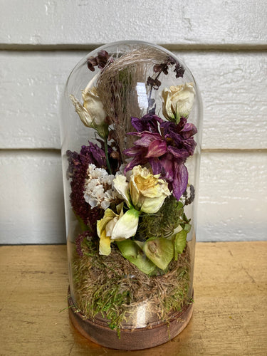 Dried Flower Cloche #10 (small)