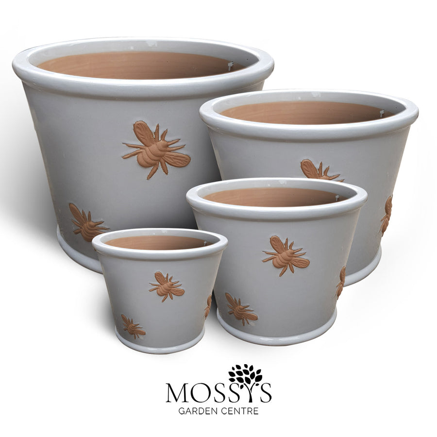 NEW! Bee Pots Grey
