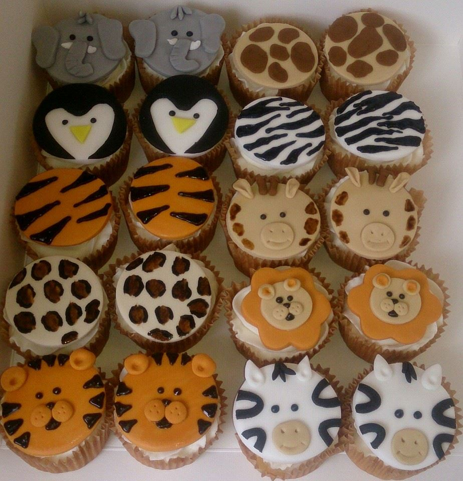 Animal and pattern cupcakes