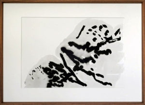 Drawing from Rocks: An Exhibition of Experimental Ink Drawings