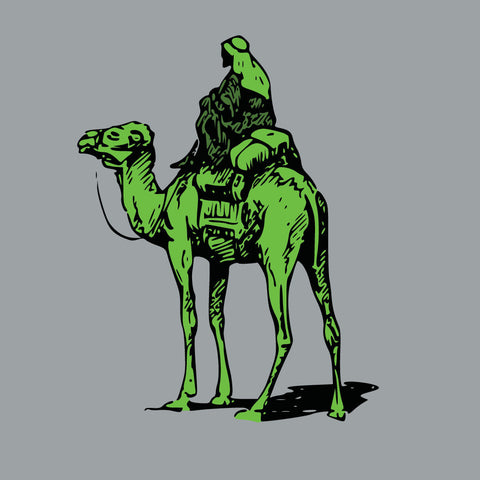 Silk Road Camel T-Shirt