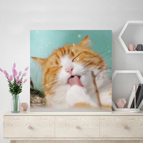 Personalized Diamond Painting Kit Full Square Round Rhinestone Unique Gifts Love Gifts