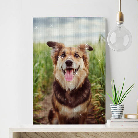 Custom Photo Diamond Painting Kit Full Square Round Rhinestone Unique Gifts Personalized