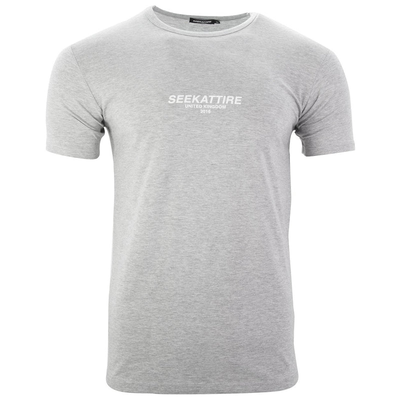 Authentic Logo T-Shirt Grey