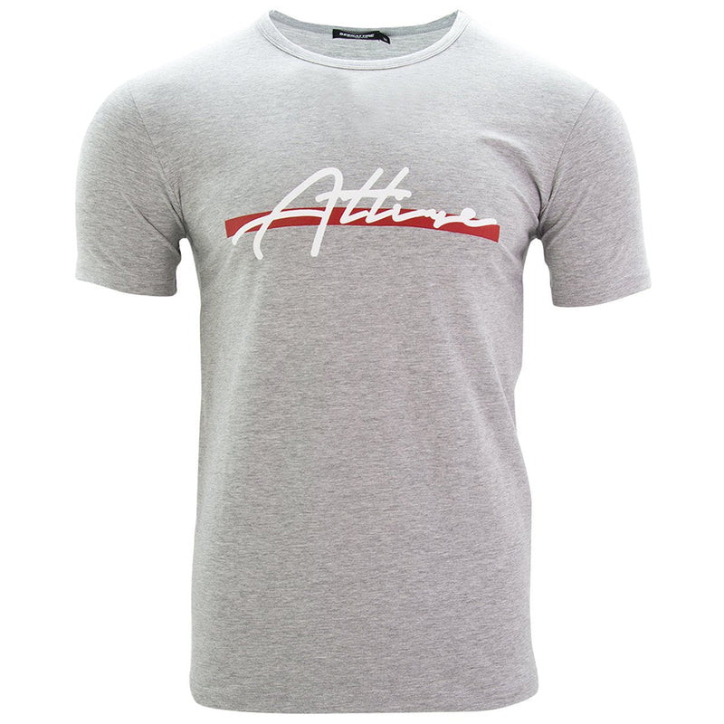 Red Stripe Signature Logo T-Shirt Grey