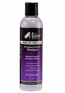 The-Mane-Choice-Easy-On-The-Curls-Shampoo-8-oz