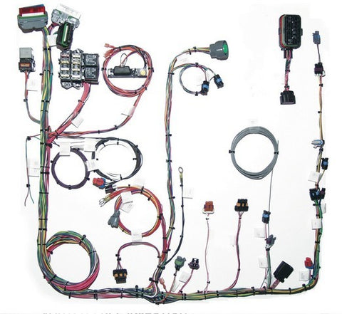 60215 GM 1996 - 1999 Vortec V6 Fuel Injection Harness (CMFI) Extra Length