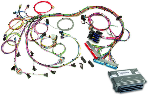 60713 1998-2004 GM LS1/LS6 EFI Harness & VATS Removed ECM