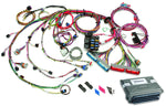 60714 1999-2006 GM Gen III 4.8/5.3/6.0L EFI Harness & VATS Removed ECM - Mech TB