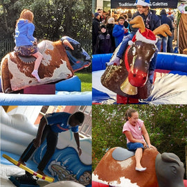 Rodeo Reindeer or Surf Board Simulator Hire - Games2Hire