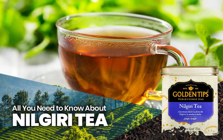 All You Need to Know About Nilgiri Tea