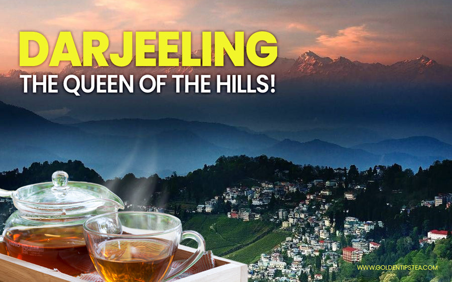 darjeeling the queen of the hills