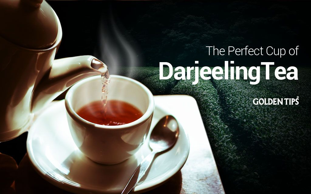 The Perfect Cup of Darjeeling Tea