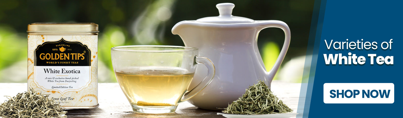 shop now all about white teas