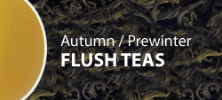 Autumn-Prewinter Flush Teas