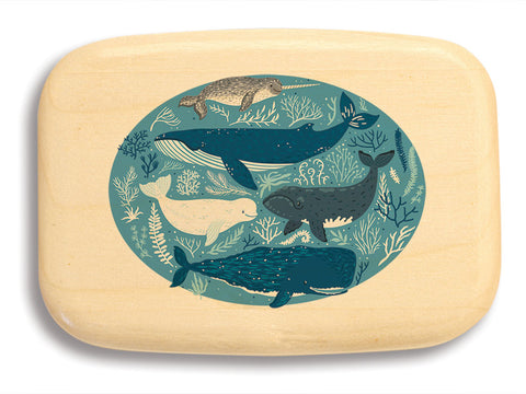 "Top View of a 3"" Med Wide Aspen with color printed image of Whales"