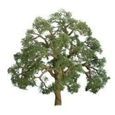 "JTT O-scale, Live Oak, 1/pk, 5"" Height (96043)"
