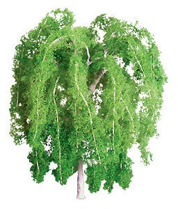 JTT N-Scale Weeping Willow 4pk (94267)