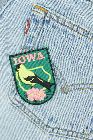 Vintage Iowa Patch
