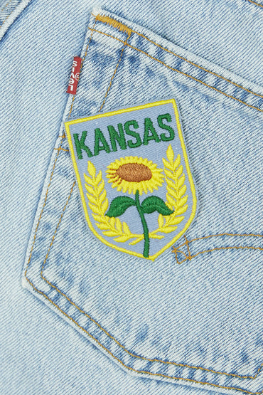 Vintage Kansas Patch