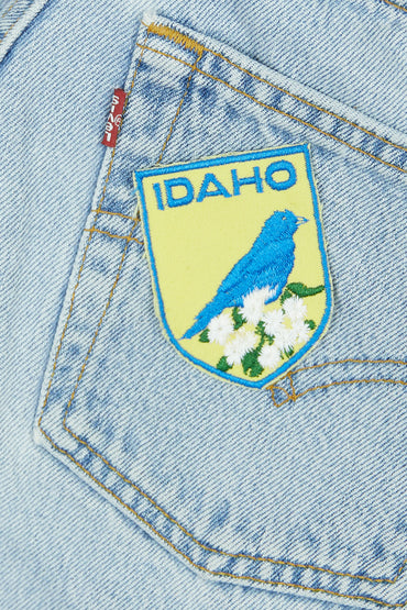 Vintage Idaho Patch
