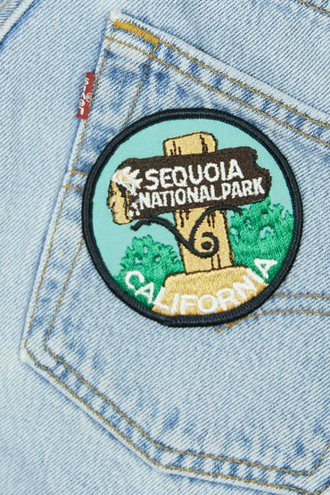 Vintage Sequoia Patch