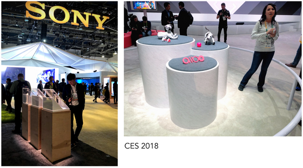 Sony CES 2019 Trade Show Displays