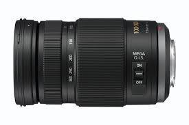 Panasonic Lumix G Vario 100-300mm f4-5.6 II OIS