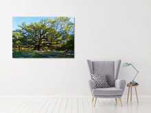 Load image into Gallery viewer, metal print of an old live oak in a cemetery.